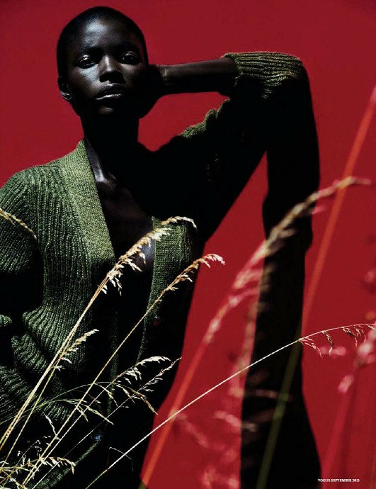 jeneil williams, vogue germany september 2013, julia noni