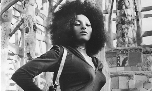 Pam Grier, Foxy Brown