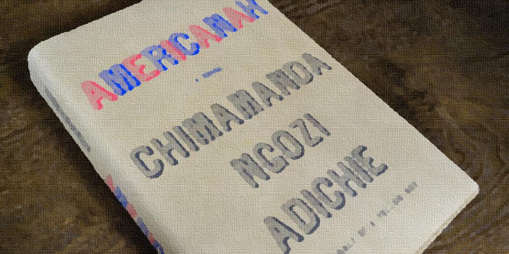 Americanah, Chimamanda Adichie, musingandrea, race