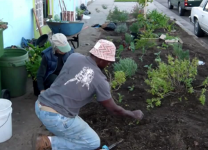Watch This.  Ron Finley.  An Unlikely Farm Feeds A Community.