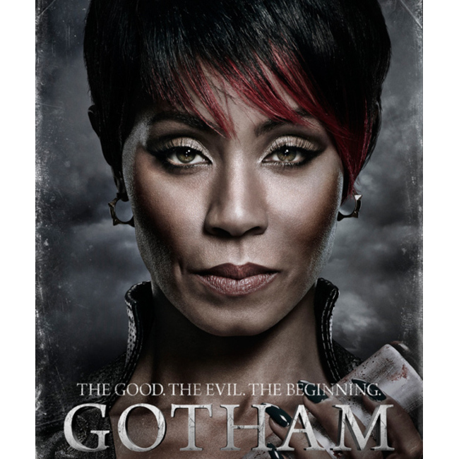 Warner Bros. Television Scraps Plans To Use Stuntwoman in Blackface for Episode of 'Gotham'.