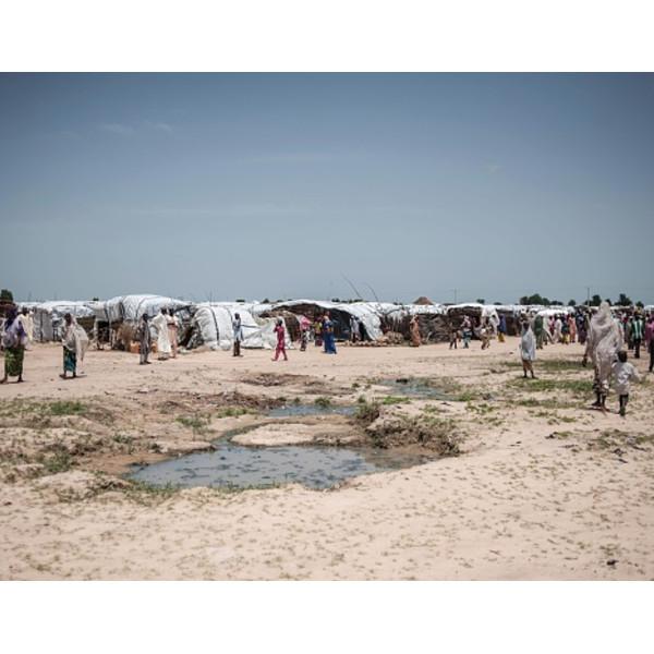 Nigeria Borno State Camp